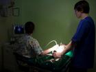 weterynarz ortopedia i chirurgia specjalistyczna!