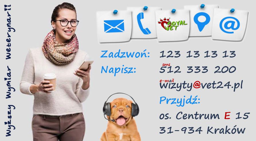weterynarz Kraków kontakt